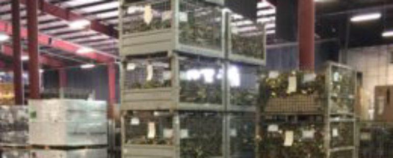Production & Light Assembly